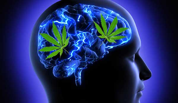is cannabis addictive